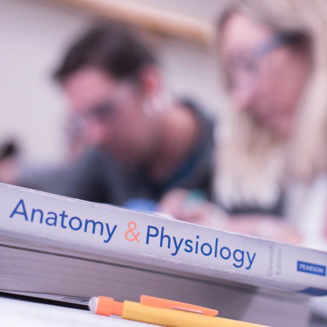 Biology at UMA