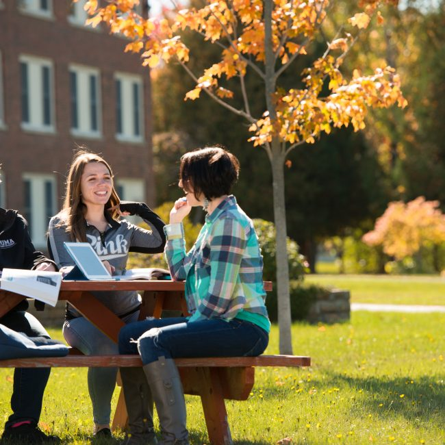 UMA Students studying on the Bangor Campus Green