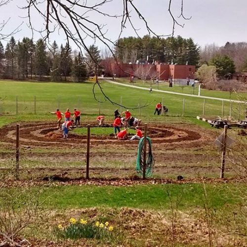 The first permanent labyrinth at the University of Maine at Augusta was built in Spring 2018 in the UMA Augusta Campus Community Garden.  A path of white clover will be perennial, with annual vegetables and flowers growing in the labyrinth walls.