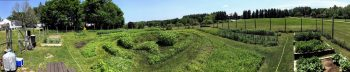 The University of Maine at Augusta Augusta-Campus Garden Labyrinth, July 5 2018